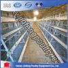 Battery Layer Poultry Cages (BDT033-JF-33)