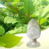 Factory Supply Natural Resveratrol 50% 98% HPLC