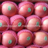 Good Quality for Sale Fresh Red Apple
