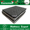 Hot Sale Foam Encased Pocket Spring Mattress Euro Pillow Top