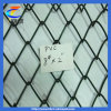 Top Quality Chain Link Fence (China Fence)