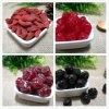 Perfect Quality Dried Fruits From Shandong Guanghua