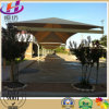 Professional Design Shade Nets for Car Parking