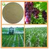 Agriculture Soluble Organic Fertilizer Amino Acid Powder