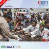 Cbfi Ce Confirmed Stainless Steel 304 Materials Block Ice Machine