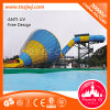 Exciting Adult Water Games Surf Water Park Equipment with Tube Slide