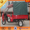 ABS Canopy for Three Wheeled Motorcycle