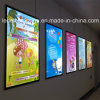 Advertising Aluminum Frame LED Light Box