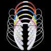 (High Quality) Sport Design Neckband Bluetooth Stereo Headset Wireless Headphone, CSR 4.0 Bluetooth Headset