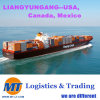 Transportation Service Container Ocean Shipping Sea Freight Forwarder for FCL