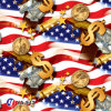 Yingcai America Eagle Flag Water Transfer Printing Hydro DIP Film