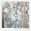 Arabescato White Marble Slab for Kitchen Countertop
