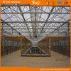 Beautiful Appearance High Quality Multi-Span Glass Greenhouse