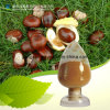 Horse Chestnut Extract Natural Aescin