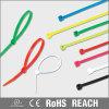 Nylon 66 Self-Locking Cable Ties