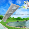 30W High Power Outdoor IP65 All-in-One Solar Street LED Light