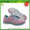 Latest Design Lady Sport Shoes