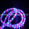 AC230V LED Neon Rope Light Y3 Flex LED Bulb Light