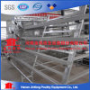 Best Sale Chicken Egg Layer Cages for Poultry Farms