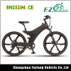 29 Inch Electric Bike with City Design