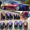 Chameleon Paint Chrome Colorshift Wrap Pearl Pigment for Car Paint