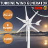 300W AC12V Green Windmill Hyacinth Driven Volt Option Turbine Wind Generator