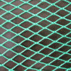 PP Knotless Bird Proof Net/Green Color Cargo Netting