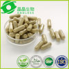 Herb No Side Effects Hoodia Weight Loss Capsule