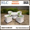 Garden Furniture Wholesalers (SC-B8217)