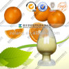 Natural Tangerine Peel Extract 95% Hesperidin