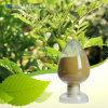 Natural 40% Glabridin Licorice Root Extract for Skin Whitening