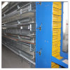 H Type Stacked Layer Poultry Equipment Cages for Chicken Farming