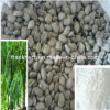 99% Levodopa Extract (Stocks 15%, 20%, 50%, 99% Purity)