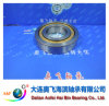 A&F Bearing/ Cylindrical Roller Bearing NJ306M