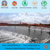 0.5mm HDPE Geomembrane Used on Shrimp Farm