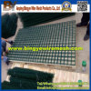 Hot Selling PVC Coated Gabion Mesh/ Welded Gabion