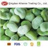 Frozen Green Broad Beans with EU Standard