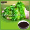 Factory Price Seaweed Extract for Plant