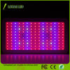 High Power LED Plant Light 900W Full Spectrum Hydroponic Grow Light