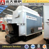 Biomass Pellet Coal Fired Greenhouse Hot Water Boiler for Heating