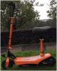 250W Electric Scooter Folding Bike Es-300