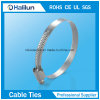 High Quality German Type Hose Clamp