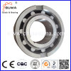 Asnu25 One Way Bearing Roller Type