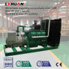 Factory Supply Natural Gas Power CNG Generator