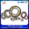 High Performance Hgf Brand Deep Groov Ball Bearing 6200 10*30*9 mm
