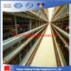 Laying Cages H Type for Algeria