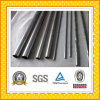 Top Quality Stainless Steel Pipe/Tube on Sale