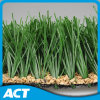 Synthetic Grass for Football Soccer Field (M60)