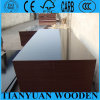 China Film Faced Shuttering Plywood/Formwork Plywood