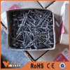 Common Nail, Iron Nail, Common Wire Nail